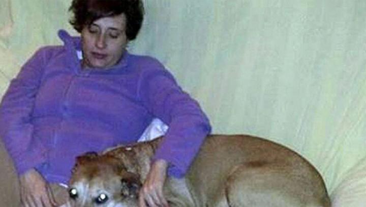 Пользователи соцсетей вступились за якобы подхватившую Эболу собаку