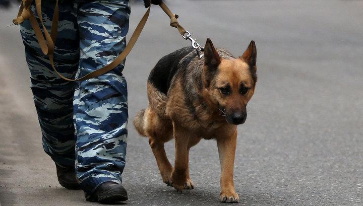 В Краснодаре эвакуировали администрацию, торговые центры и ряд учебных заведений