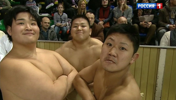 Секс сумоистов