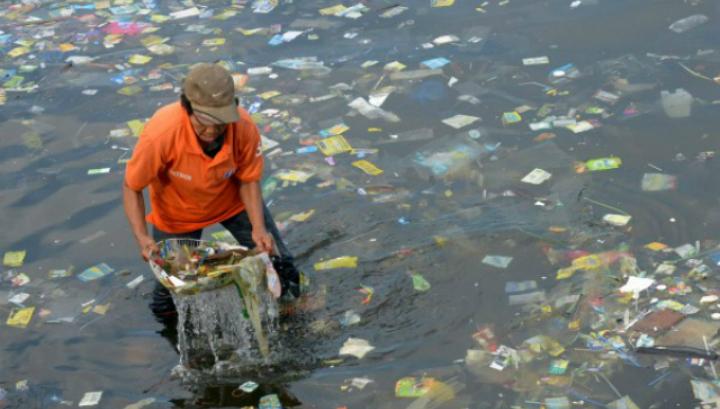 Самые значимые экологические проблемы, с которыми мир столкнулся в 2014 году