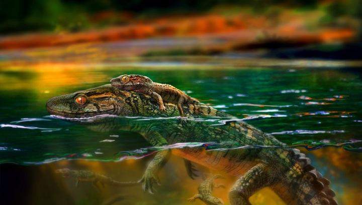 Филидрозары вели полуводный образ жизни и обитали на планете 145 миллионов лет назад