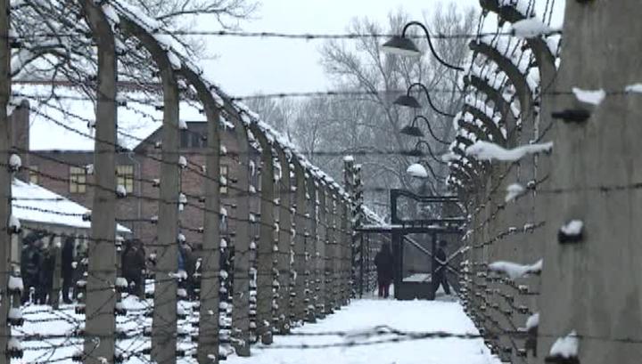 Недалеко от Освенцима нашли обломки Ил-4 из легенды