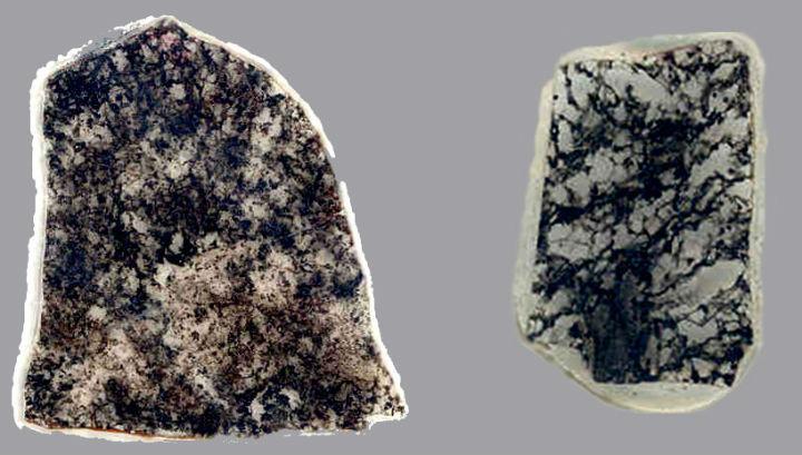 Срезы породы, содержащие окаменелые серобактерии (тёмные участки) возрастом 1,8 (справа) и 2,4 (слева) миллиарда лет