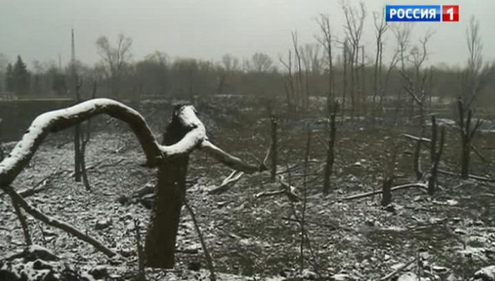 Донбасс ждет мира