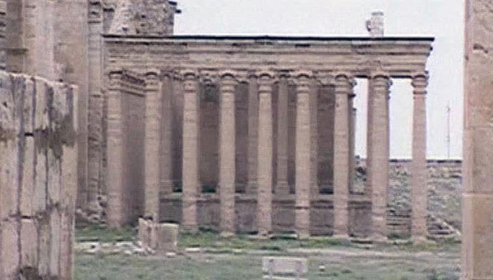 """""""Исламское государство"""" разровняло бульдозером руины древнего города Хатра"""