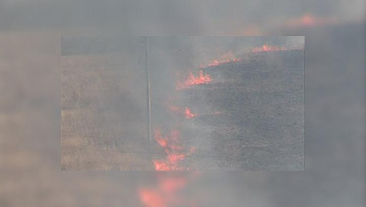 На Смоленщине более полутора тысяч гектаров охвачены огнем