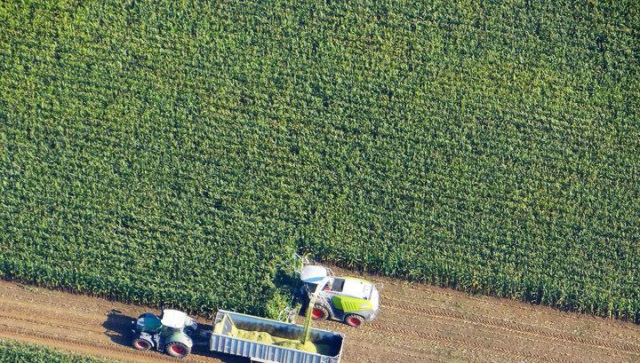 Украину могут захлестнуть ГМО