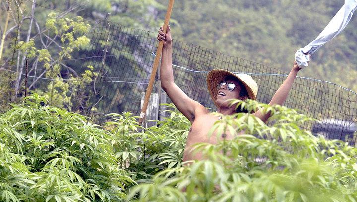 Канадский наркотический бум. Как российский бизнесмен снимает с него сливки