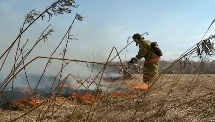 Огонь перекинулся с сухой травы на жилые дома в Приамурье