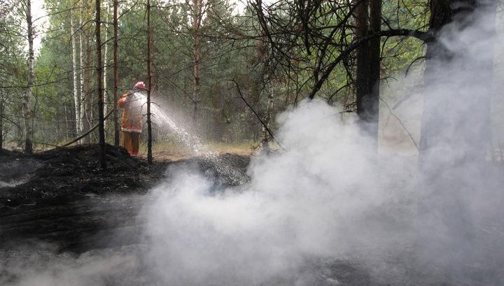 На Камчатке задержан виновник крупного лесного пожара