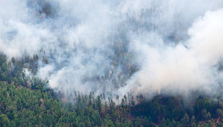 Лесные пожары: обстановка около поселка Палана осложняется