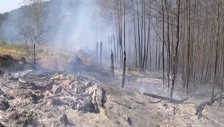 Пожары под Иркутском: надежда только на дожди