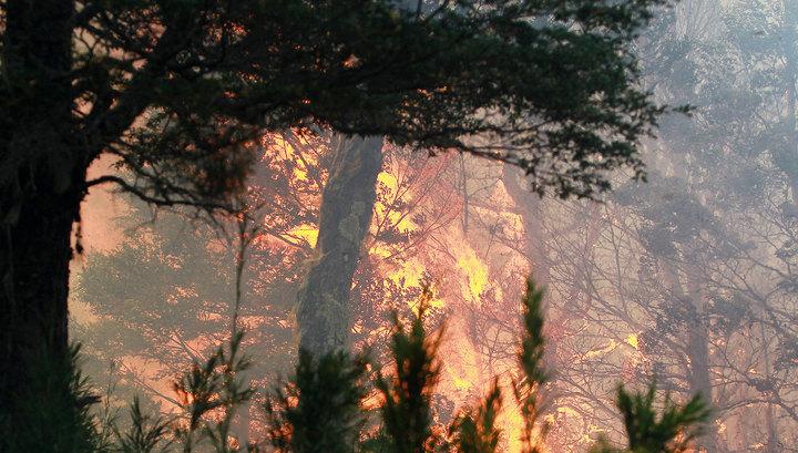 В Хабаровском крае продолжают бушевать пожары