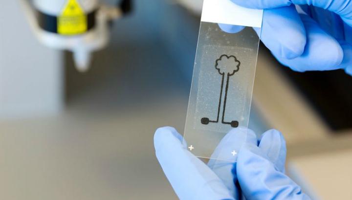 Замкнутая цепь с изображением дерева, в которой проводящий элемент был изготовлен с помощью наноцеллюлозных чернил, которые содержат углеродные нанотрубки