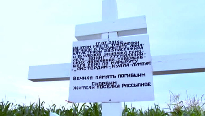 """Катастрофа """"Боинга"""" над Донбассом. Показания очевидцев не интересуют следствие"""