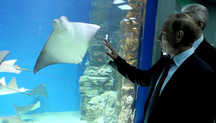 Путина заинтересовал аквариум с пираньями