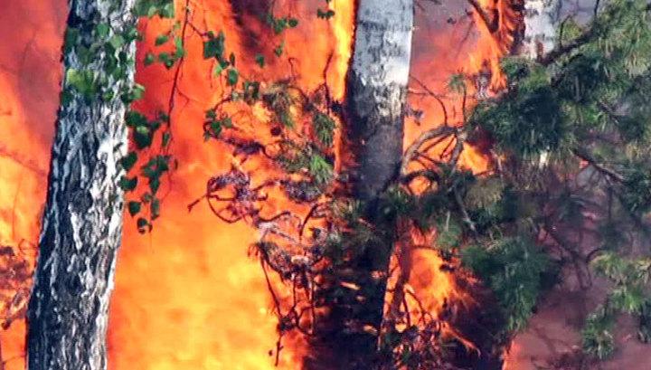 Лесные пожары: в Прибайкалье и Бурятию направляют дополнительные силы