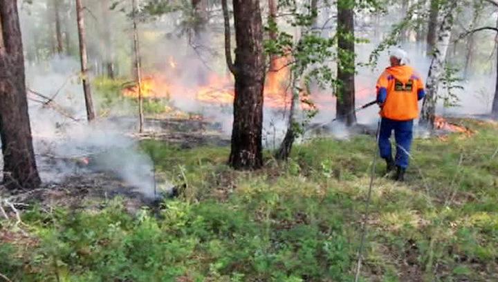 Пожары в Бурятии: площадь горящих лесов продолжает расти