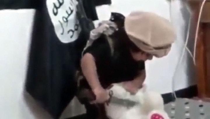 Трехлетний новобранец ИГИЛ зарезал Teddy