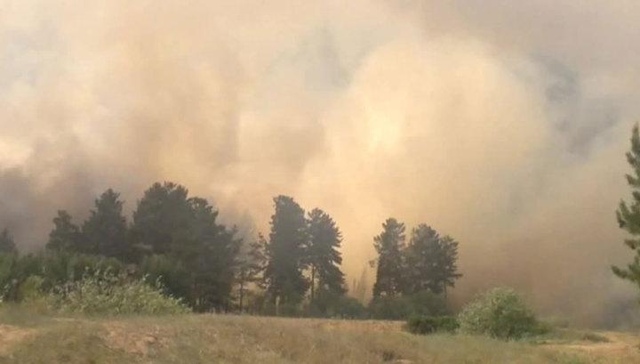Пучков: все населенные пункты в Иркутской области защищены от пожаров