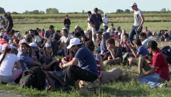 Задержаны семь подозреваемых в причастности к гибели 70 мигрантов