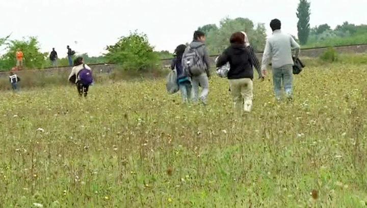 Европу захлестывает волна нелегальных мигрантов