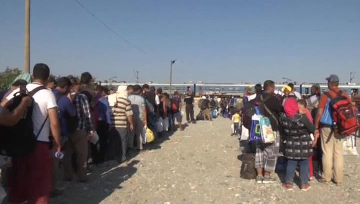 Белый дом: США примут 10 тысяч сирийских беженцев