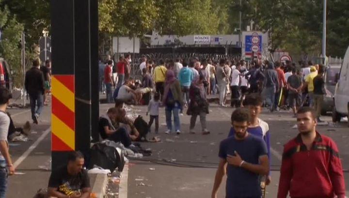 Германия выделит 20 миллионов евро на продукты для беженцев