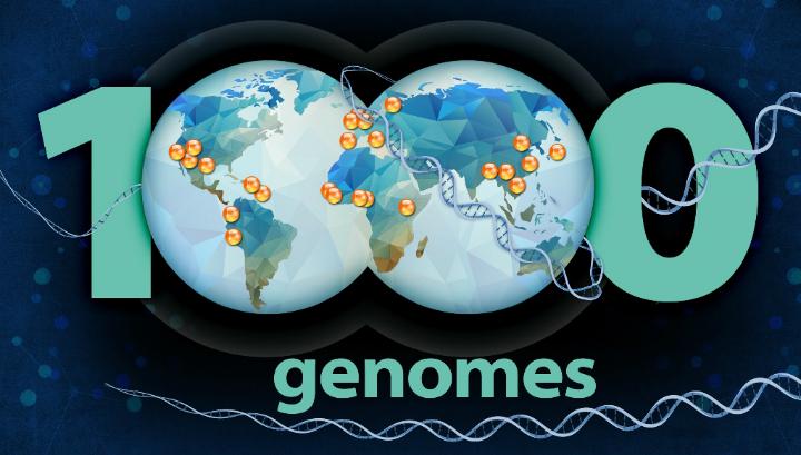 Учёные 1000 Genomes Project создали самую большую в мире базу данных генетических вариаций людей
