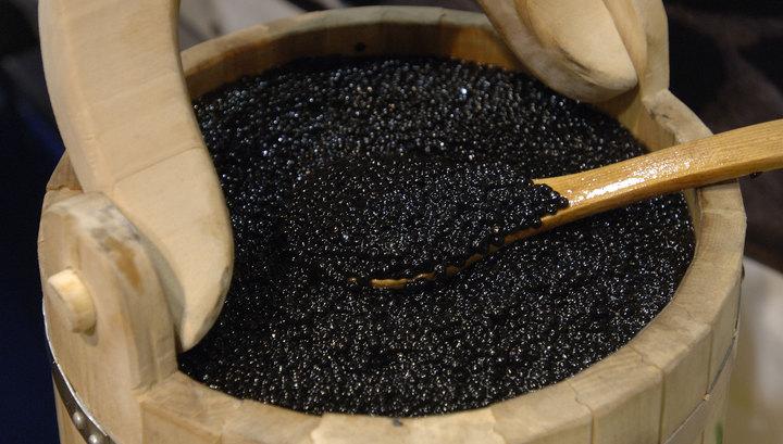 Катафалк с полным гробом черной икры задержали за превышение скорости