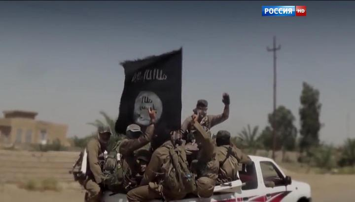Нефтяной магнат Эрдоган считает безумием войну с ИГ