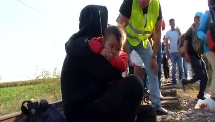 В Конгрессе США не готовы к наплыву беженцев с Ближнего Востока