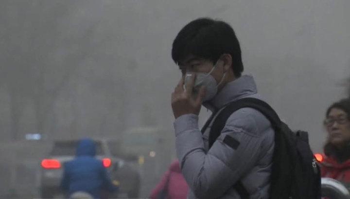Вспышку пневмонии в Китае вызвал новый вид коронавируса