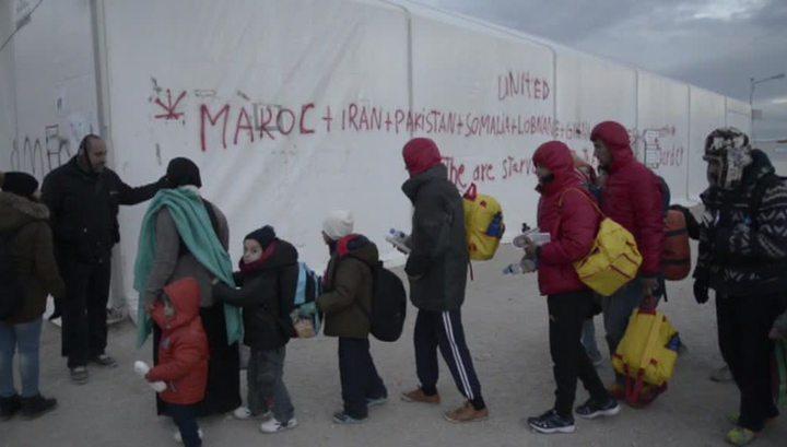В Евросоюзе пропали 10 тысяч детей-беженцев