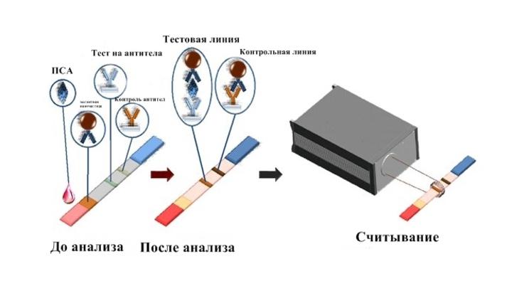 Уникальный анализ крови результаты анализов при раке крови