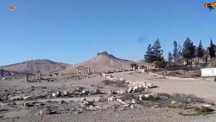 Пальмира: от исторического памятника ничего не осталось