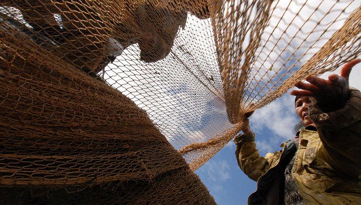 Картинки по запросу рыболовных сетей