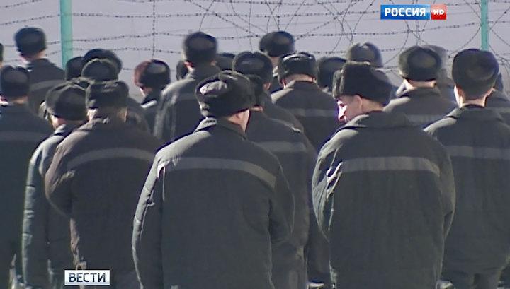 Преступление и исправление: в России появится новый вид уголовного наказания