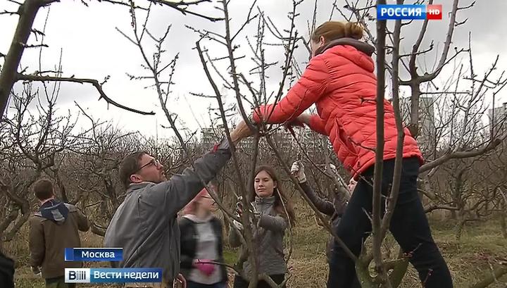 Путин помог ученым Тимирязевки отбиться от застройщиков