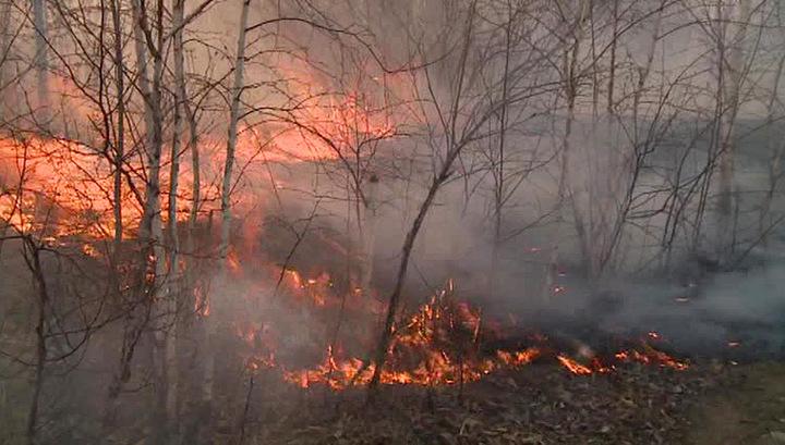 МЧС бросило дополнительные силы на борьбу с пожарами в Приамурье
