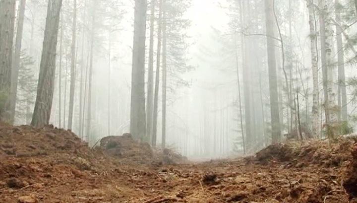 """""""Лесной спецназ"""" против: в Бурятии идет ожесточенная война с лесными пожарами"""