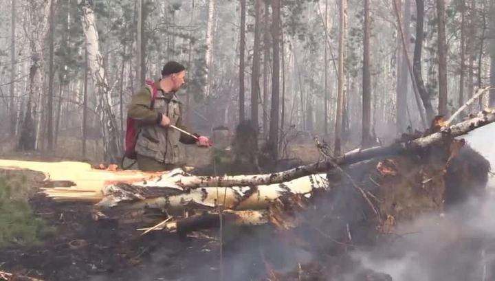 Лесные пожары в Сибири: тайга в огне, дым над городом и 40 уголовных дел