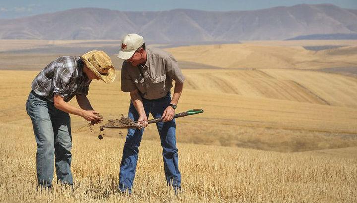 Почва, взятая из здоровой экосистемы, может помочь восстановить разрушенный участок.