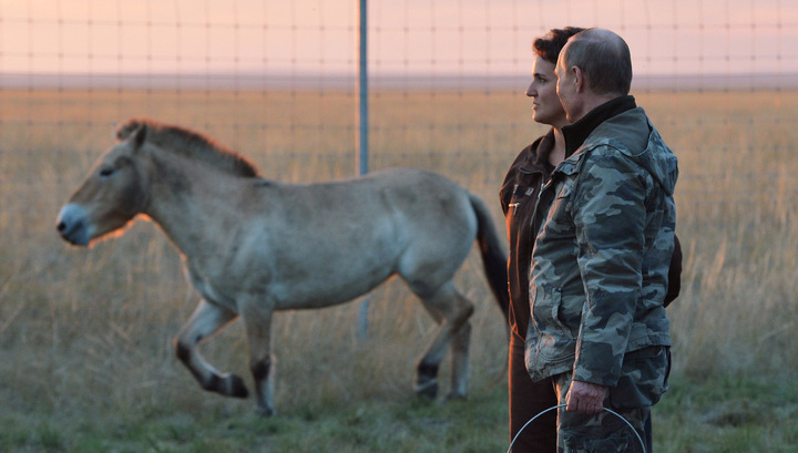 Лошади Пржевальского побежали за квадроциклом Путина