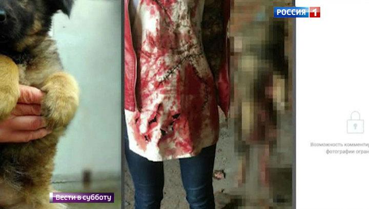 Живодерку Савченко поймали в Новосибирске