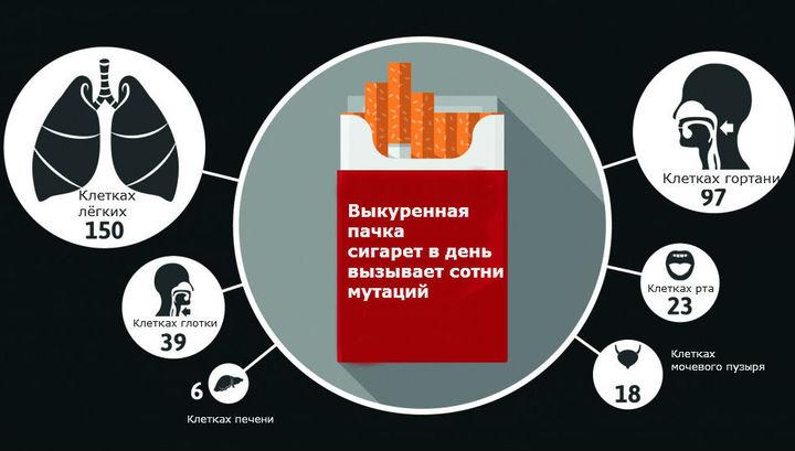 Учёные разобрались, сколько мутаций возникает из-за ежедневного курения.