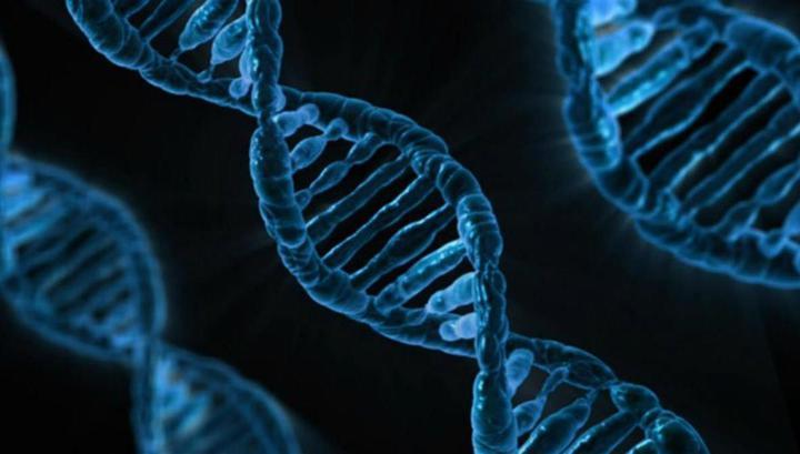 По словам учёных, 50 тысяч геномов – это очень мало для каких-то статистических оценок и формирования представлений о тенденциях.