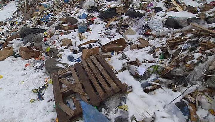 В Подмосковье среди мусора обнаружено тело младенца