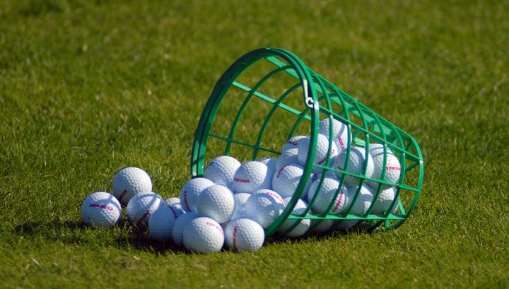 Гольф-клуб оштрафовали за мячи, попавшие в чужой дом