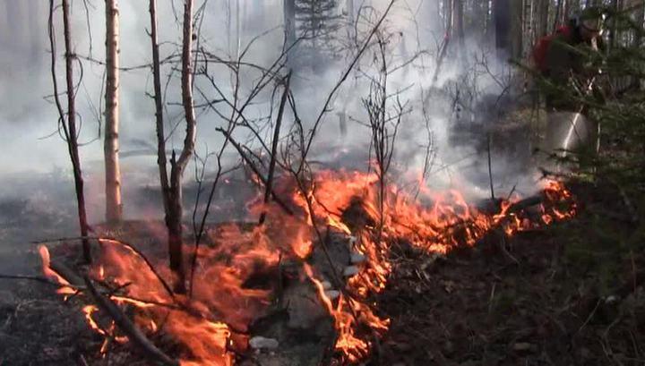 Республику Тыва охватили лесные пожары